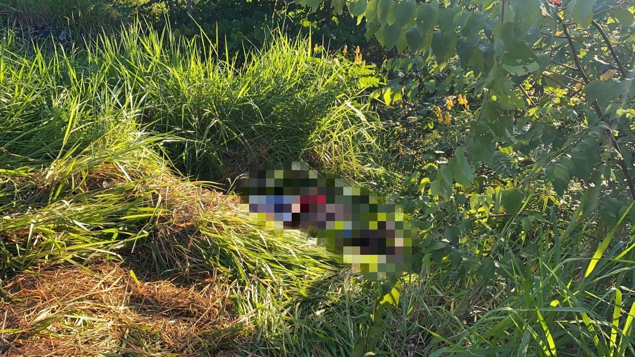 Corpo foi localizado dentro de um matagal